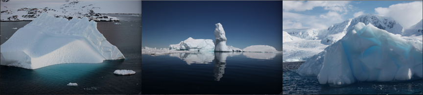 triptych of images of antarctica